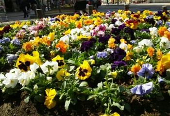 2014-03-16-22-59-19_deco.jpg