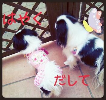 2014-03-24-23-26-51_deco.jpg