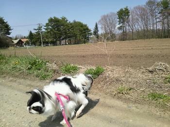 2014-04-27-13-28-16_photo.jpg