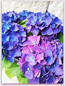 2014-05-13-17-41-13_deco.jpg