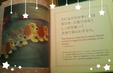 2014-11-13-23-08-02_deco.jpg